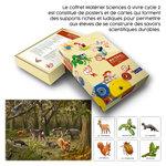 Coffret pédagogique Sciences à vivre Cycle 2 accompagné du poster et des cartes sur le thème de la forêt.