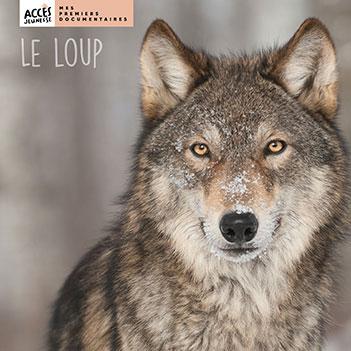 Couverture du livre Le loup de la collection Mes Premiers Documentaires d'ACCÈS Jeunesse illustrée par une photo de loup.
