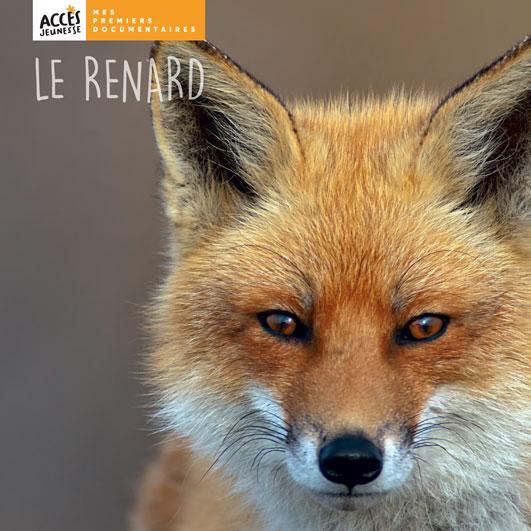 Couverture du livre photo Le renard de la collection Mes premiers documentaires d'ACCÈS Jeunesse illustrée par une photo de renard.