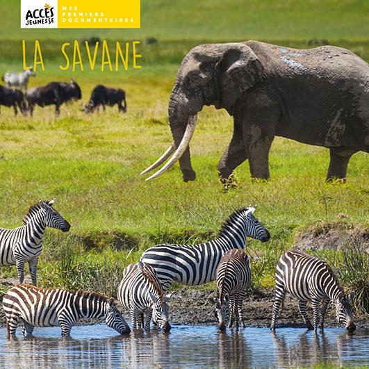 Couverture du livre La savane de la collection Mes Premiers Documentaires d'ACCÈS Jeunesse illustrée par des zèbres, un éléphant et des gnous.