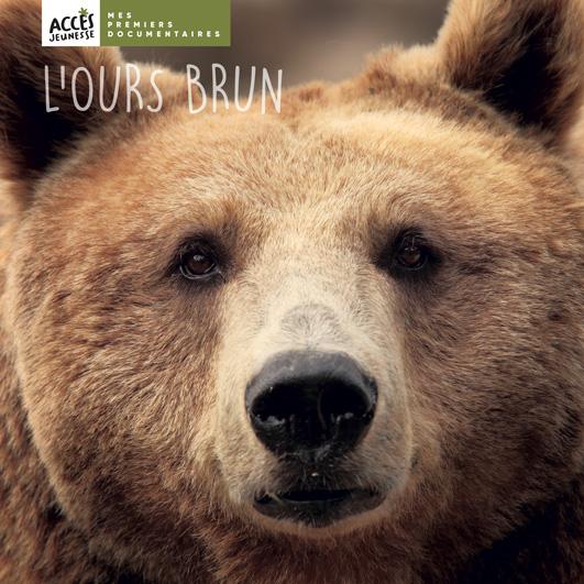 Couverture du livre photo L'ours brun de la collection Mes Premiers Documentaires d'ACCÈS Jeunesse.