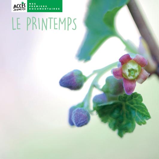 Couverture du livre photo Le printemps de la collection Mes premiers documentaires d'ACCÈS Jeunesse illustrée par une fleur en éclosion.